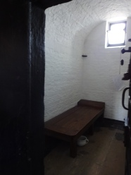 View of the cell