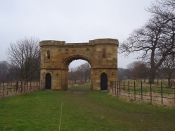 An isolated gateway between two fields is surrounded by old woodland.