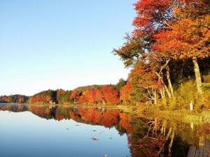 upstate new york river scene